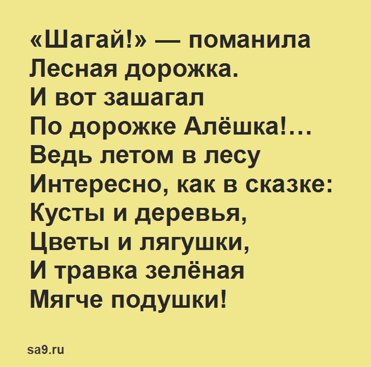 Борис Заходер стихи для детей - Летом в лесу