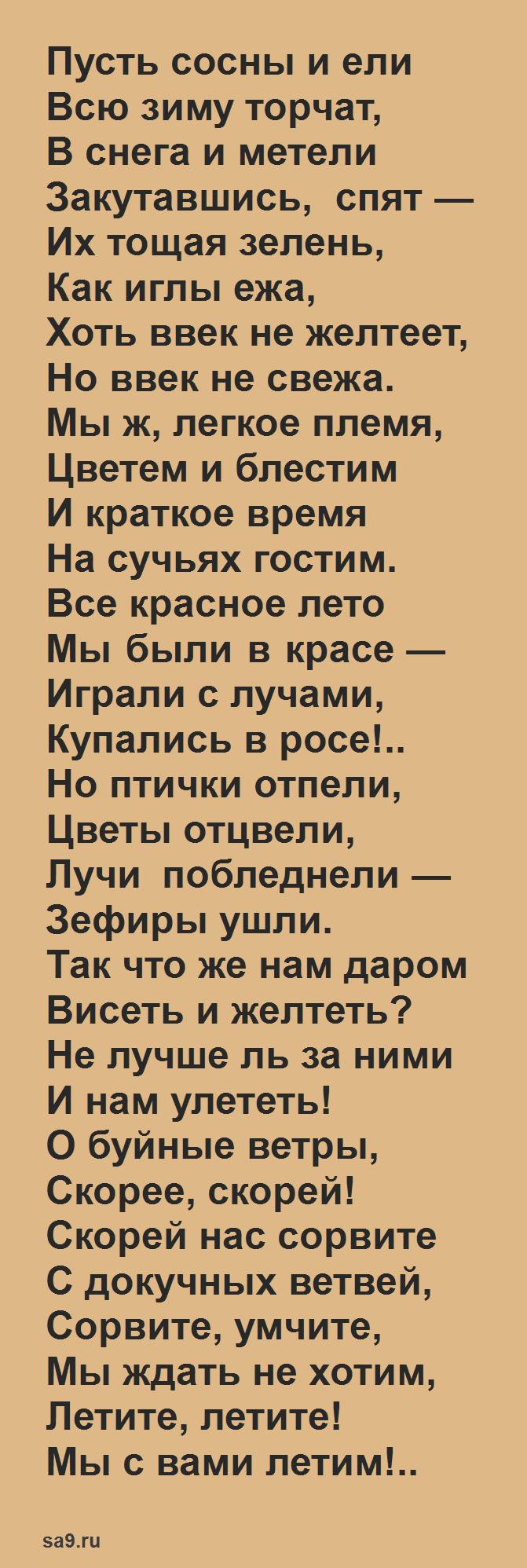 Стихи Тютчева - Листья 3 класс