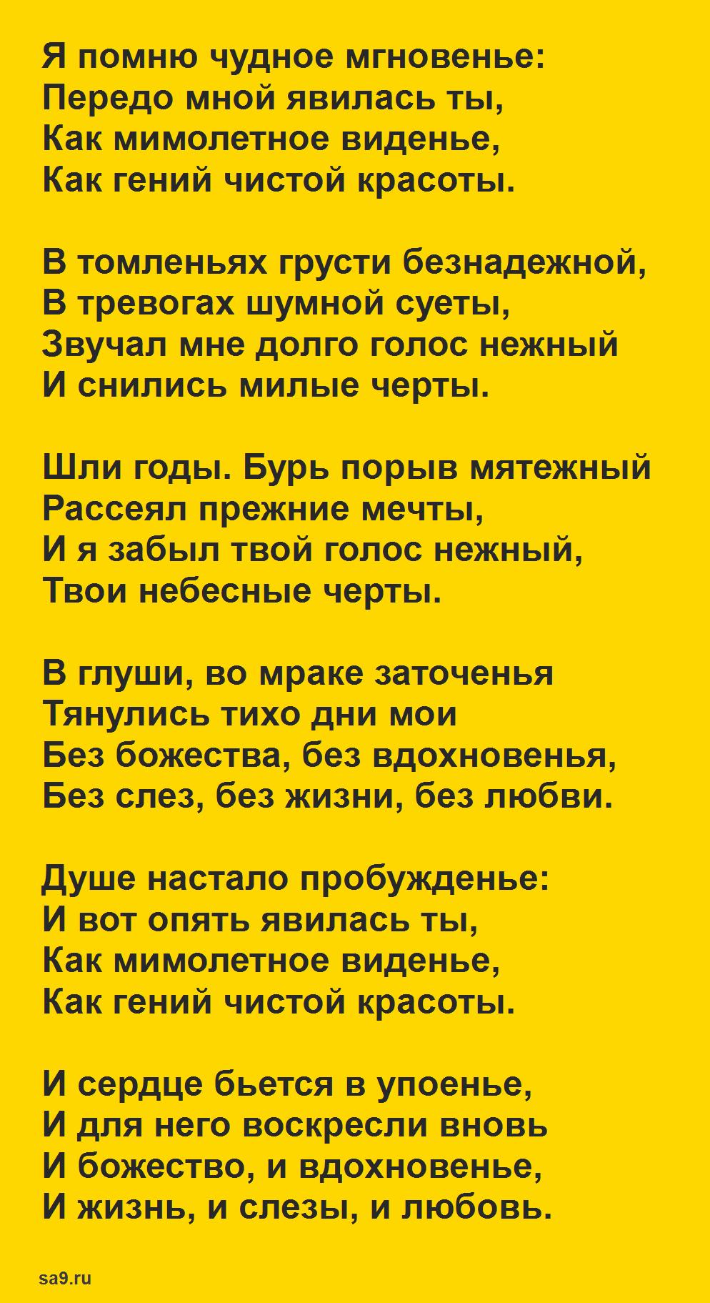 Стих Пушкина - Я помню чудное мгновенье