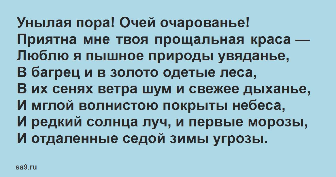Короткие стихи Пушкина - Унылая пора! Очей очарованье, легко учащиеся