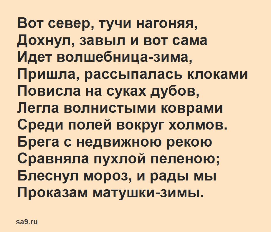 Легкие стихи Пушкина - Волшебница зима