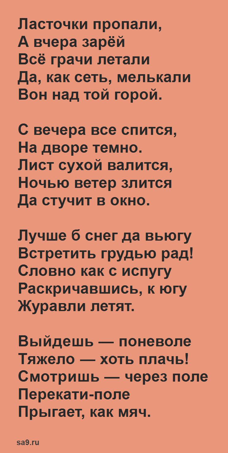 Фет стихи для детей - Ласточки, 20 строк