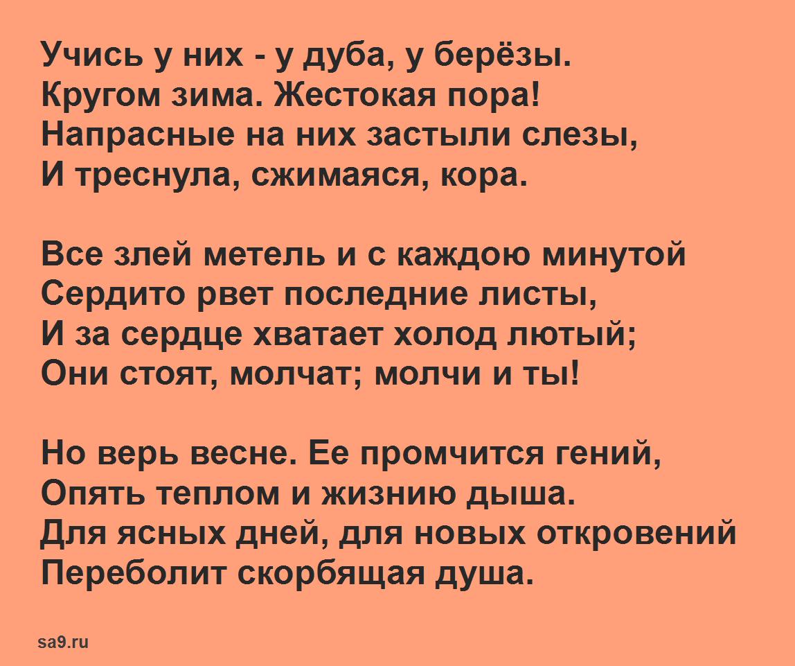 Стих Фета - Учись, 12 строк