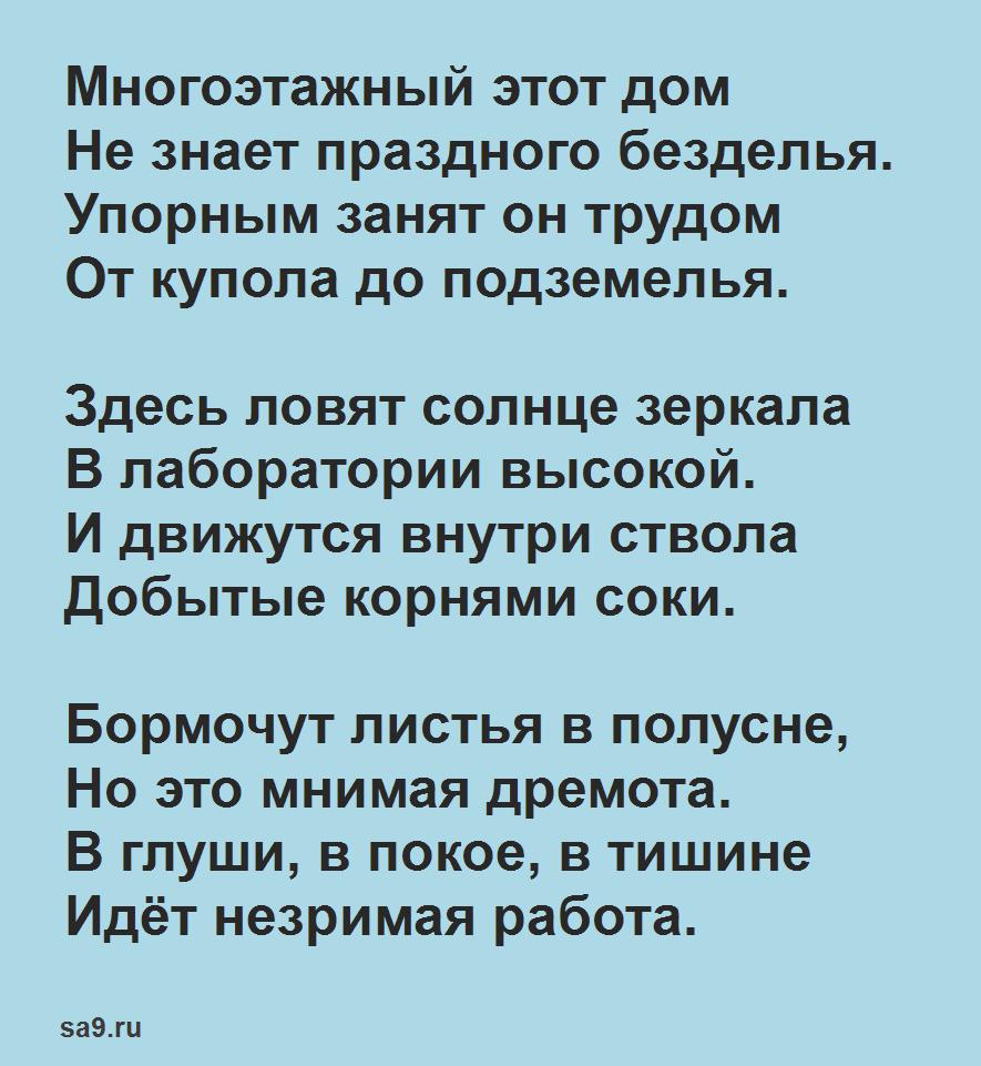 Стихи Маршака для класса - Лес