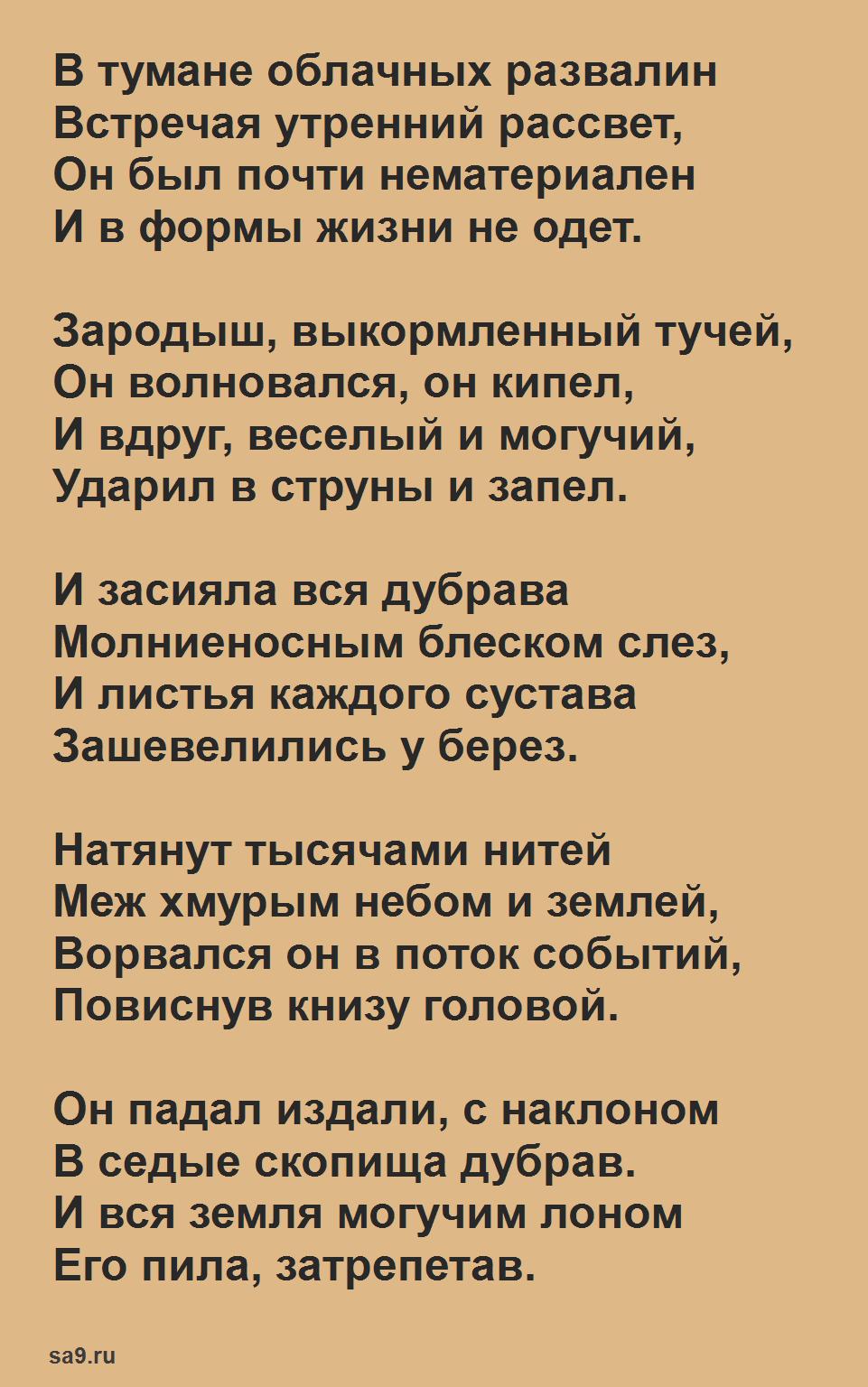 Стих Дождь Заболоцкий