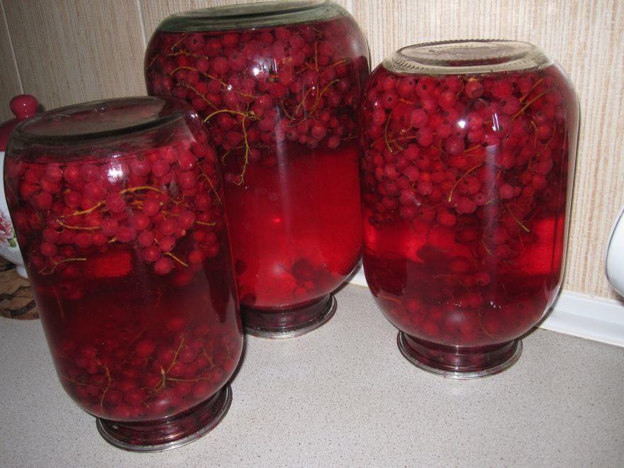 Компот из ягод смородины