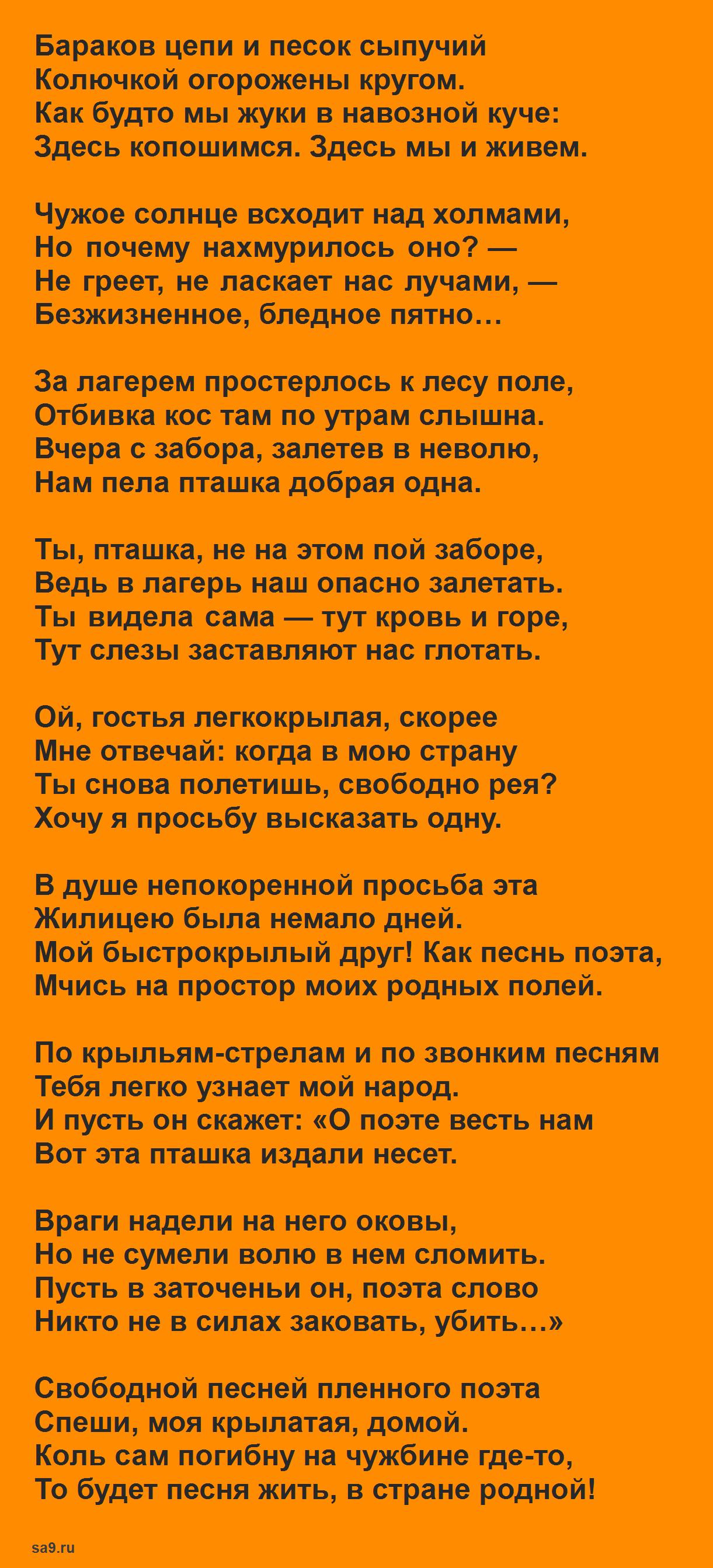 Муса Джалиль Моабитская тетрадь стихи - Пташка