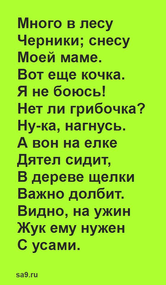 Детские стихи для детей 5 - 6 лет о лете, Городецкий