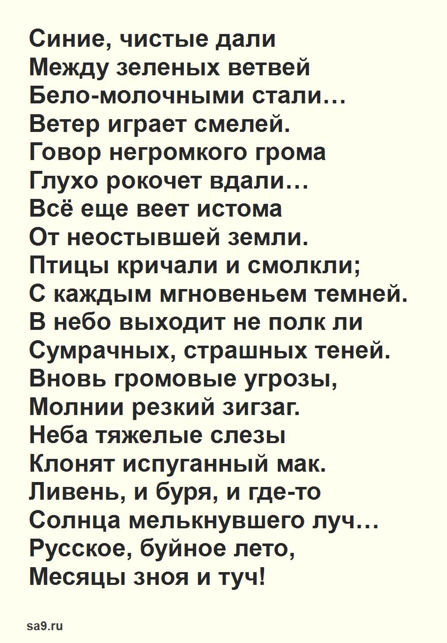 Красивые стихи русских поэтов - Летняя гроза