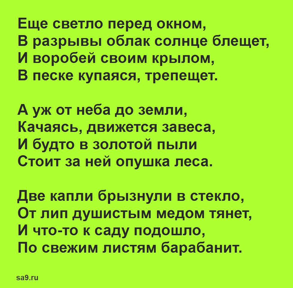 Стихи Фета о весне - Весенний дождь