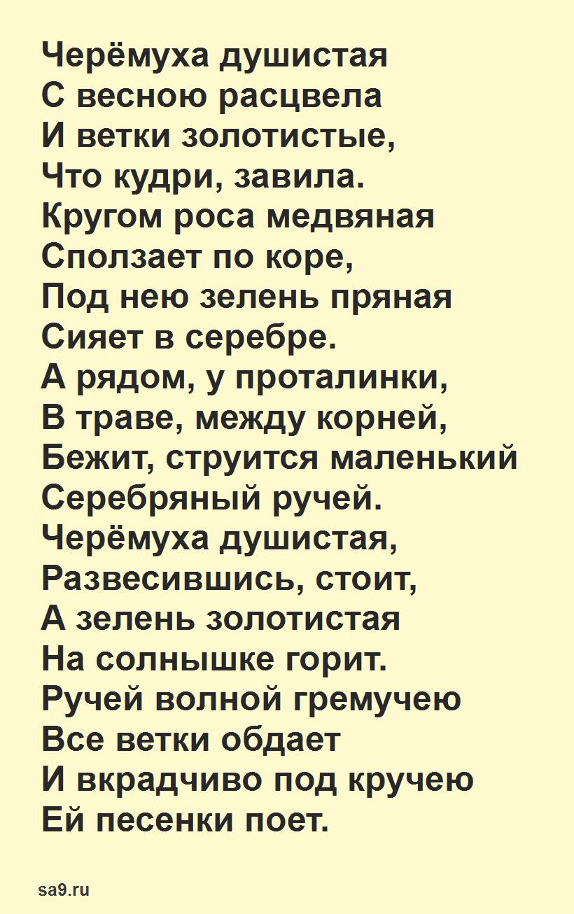Стих Черемуха душистая, Есенин