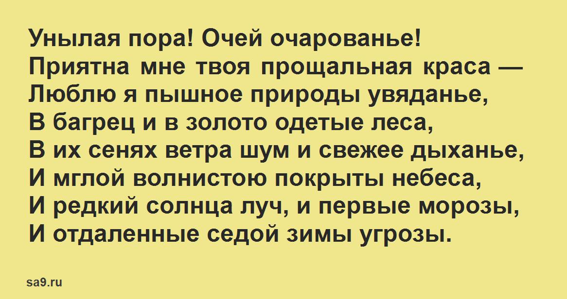 Стихи Пушкина про осень - Унылая пора! Очей очарованье!
