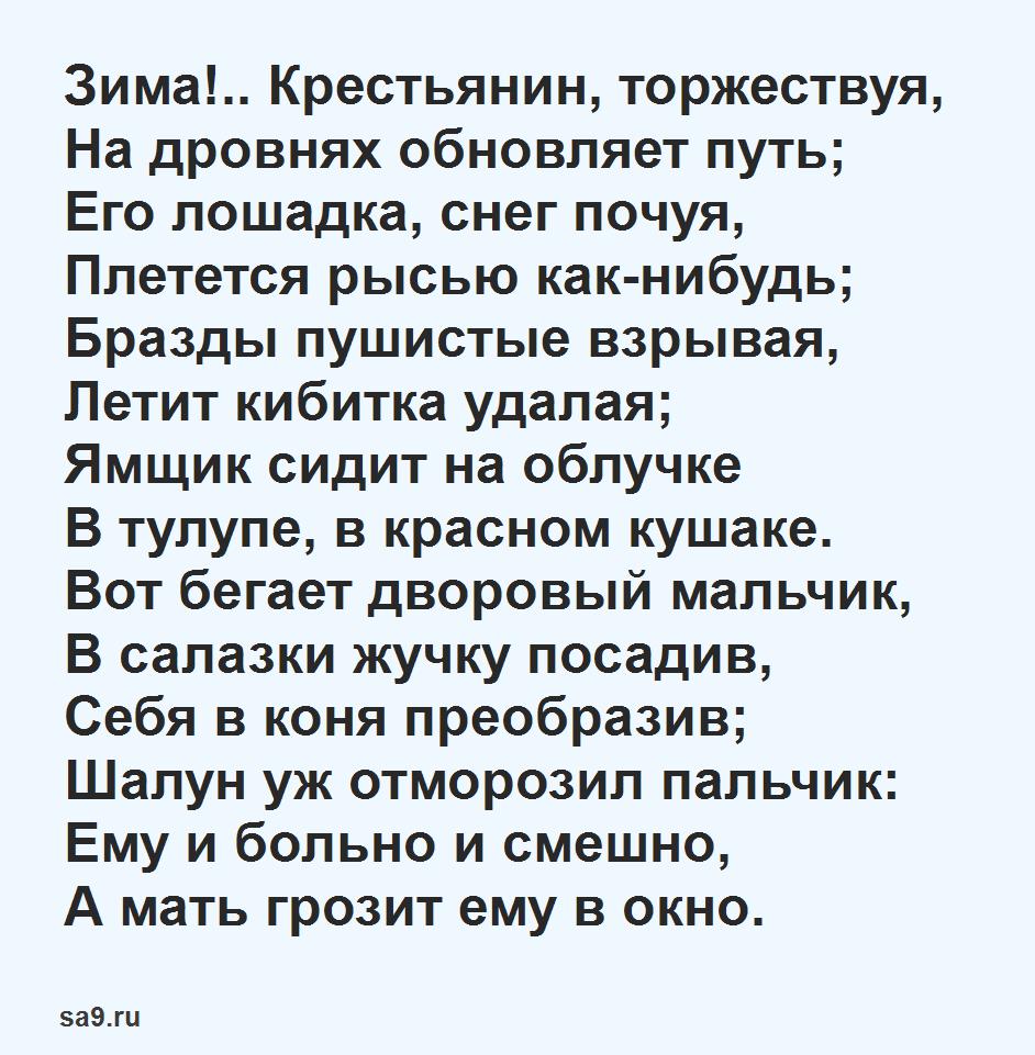 Стих - Зима крестьянин, торжествуя, Пушкин, легко учащиеся стихи