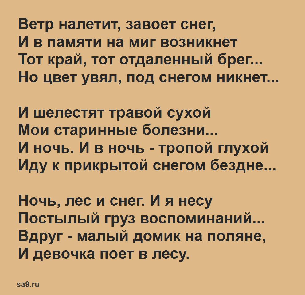 Стихи о зиме, Александр Блок - Ветр налетит, завоет снег