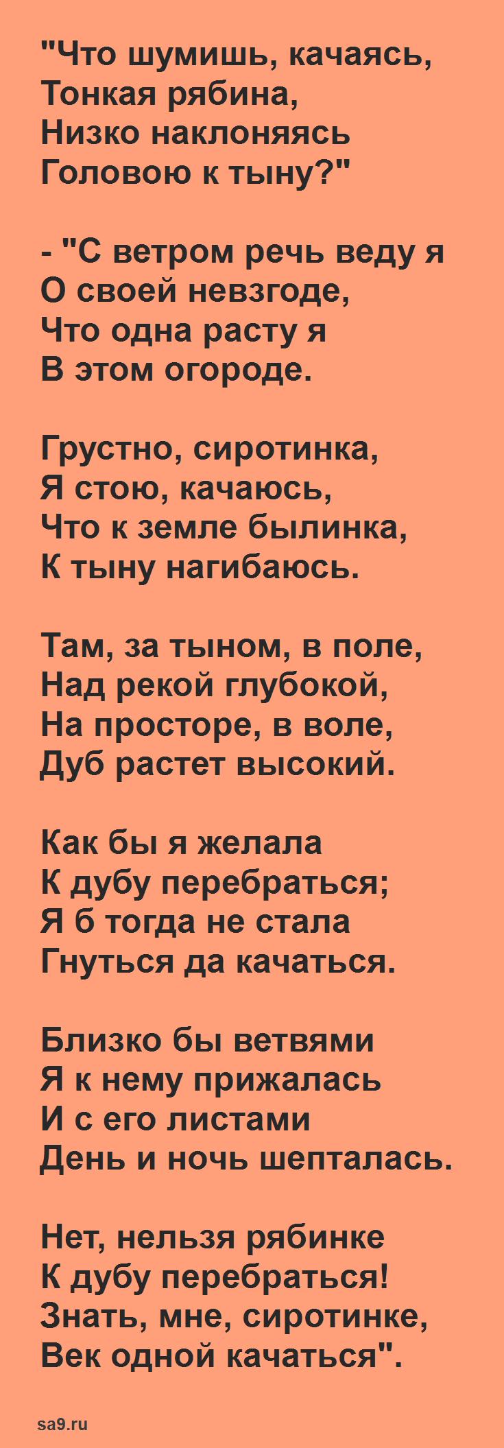 Стихи Сурикова - Тонкая Рябина