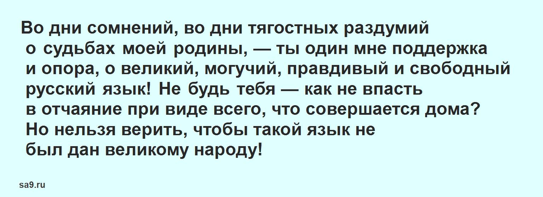 Стих - Русский язык в прозе, Тургенев