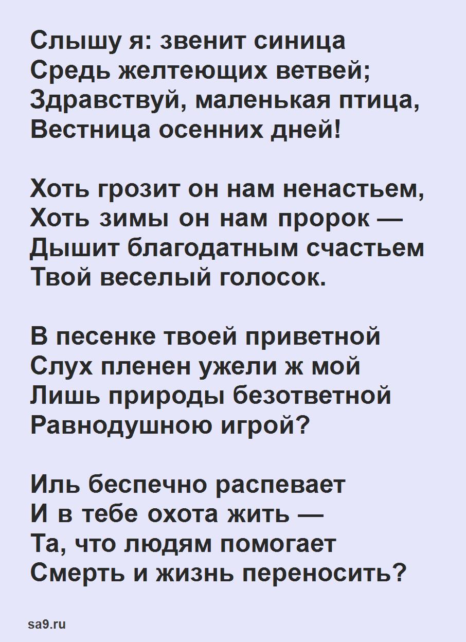 Читать лучшие стихи Тургенева - Синица