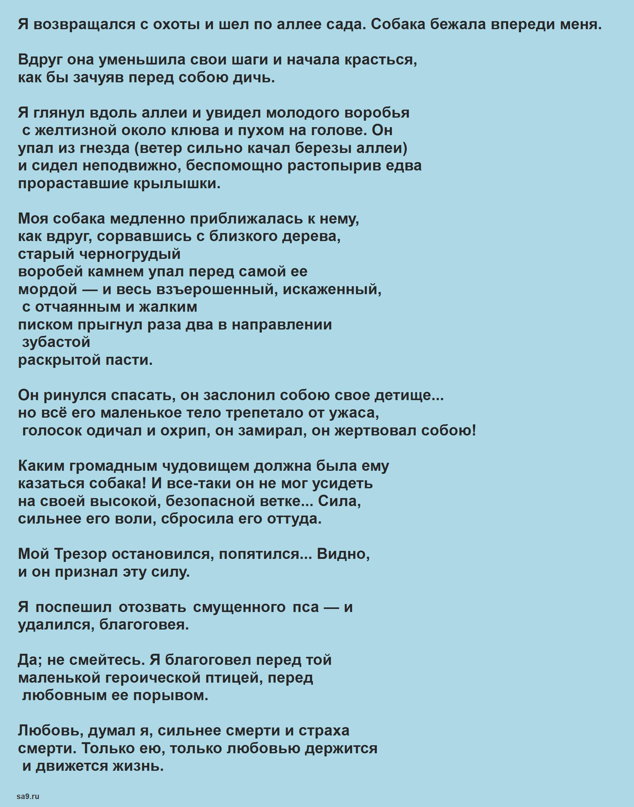 Лучшие стихи Тургенева в прозе - Воробей