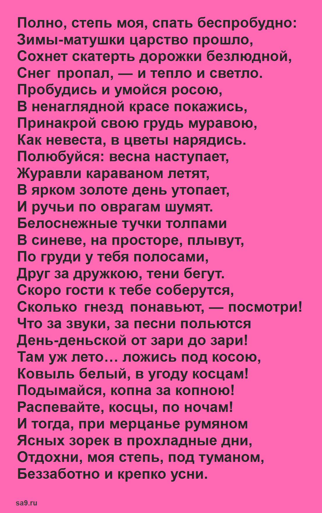 Стихи Никитина о природе - Полно степь моя спать безпробудно