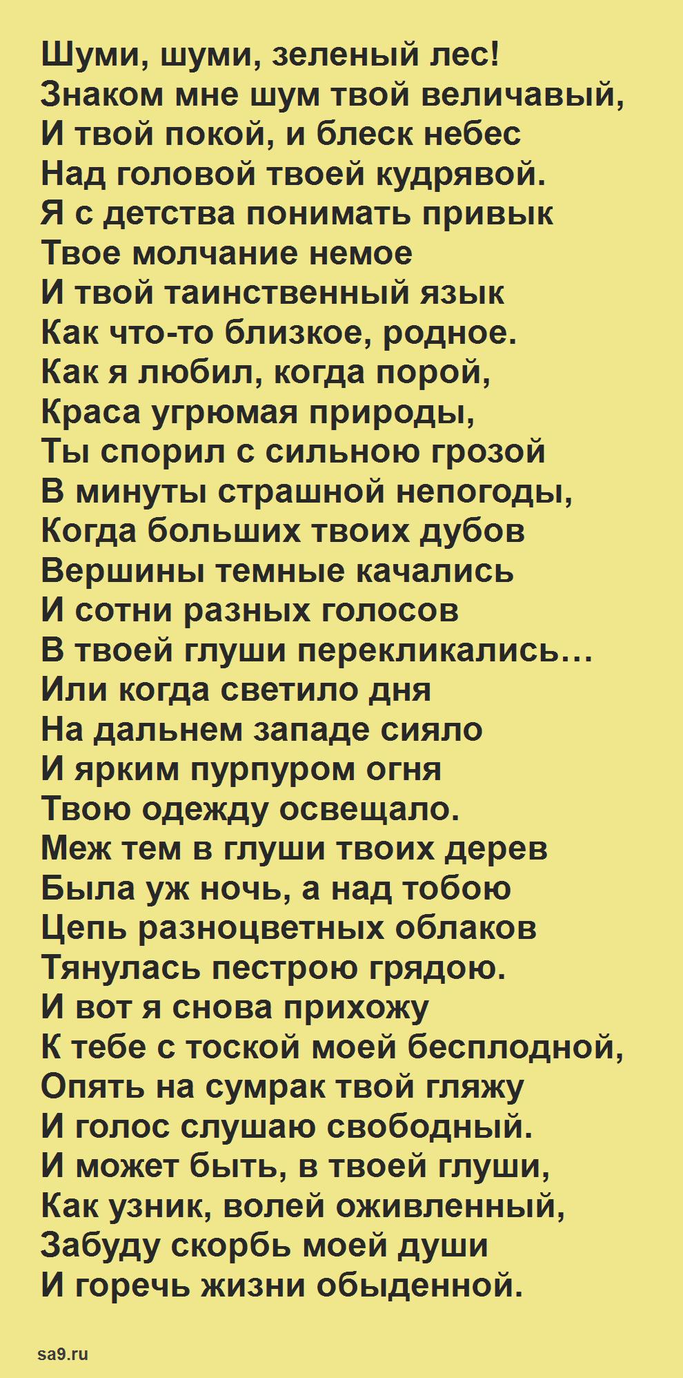Стихи Никитина 2 класс - Лес