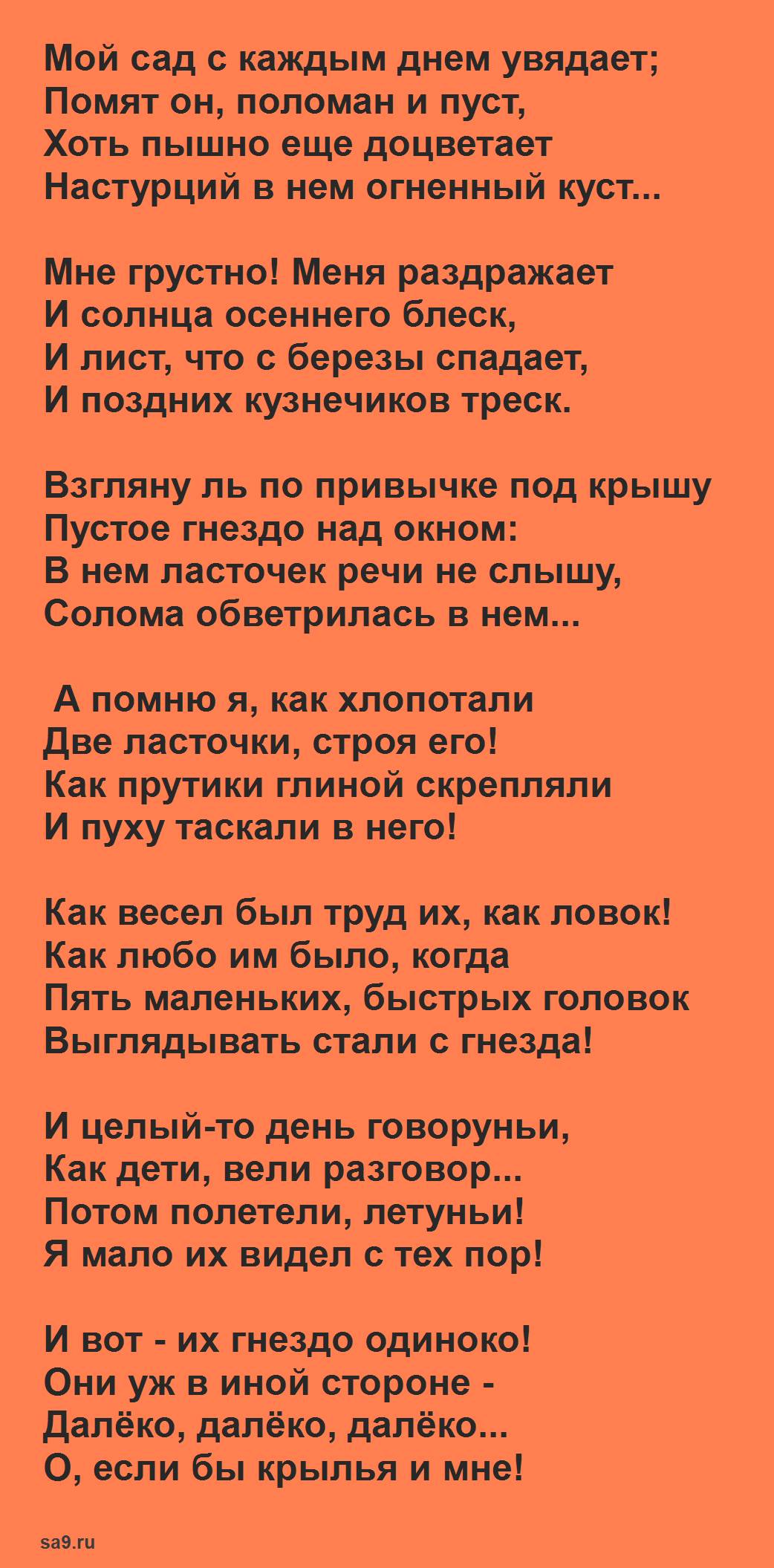 Читать стихи Майкова - Ласточки