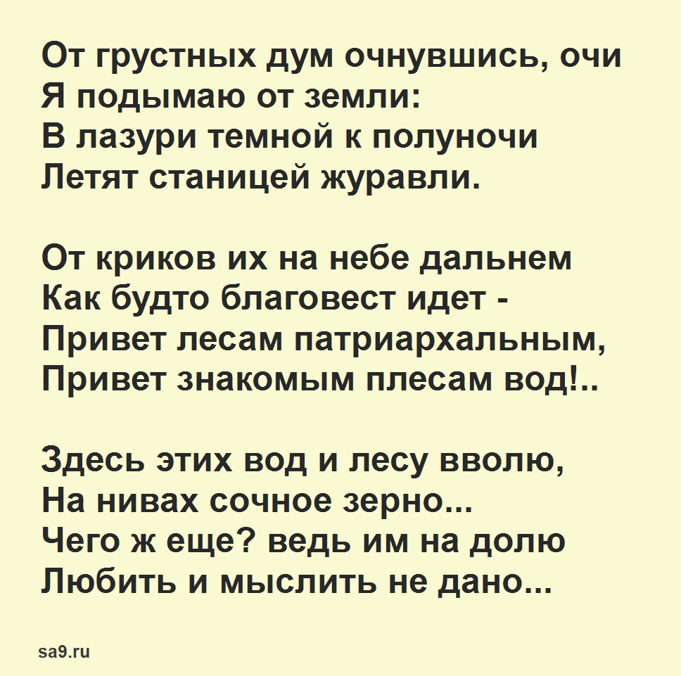 Майков стихи - Журавли
