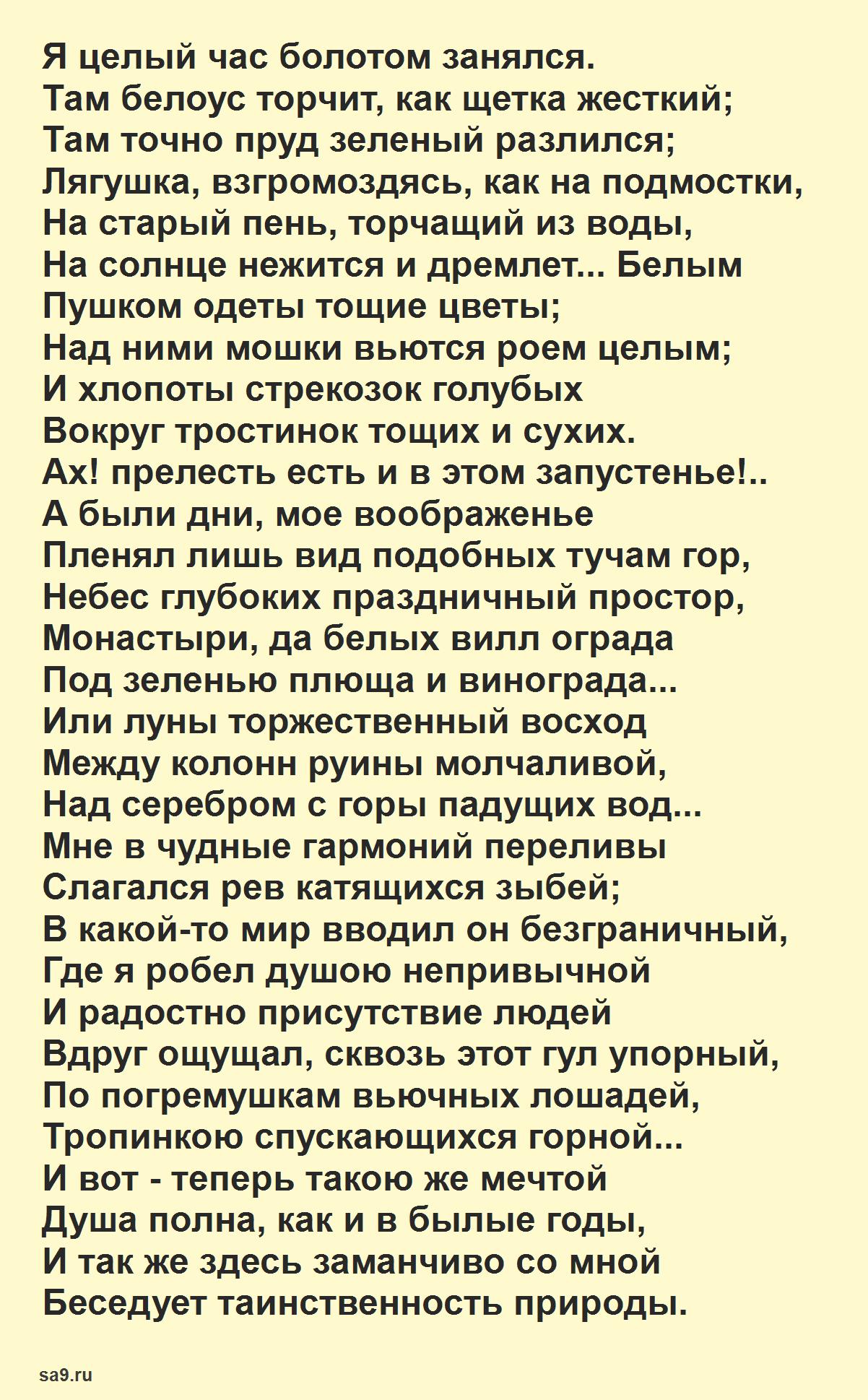 Майков стихи о природе - Болото