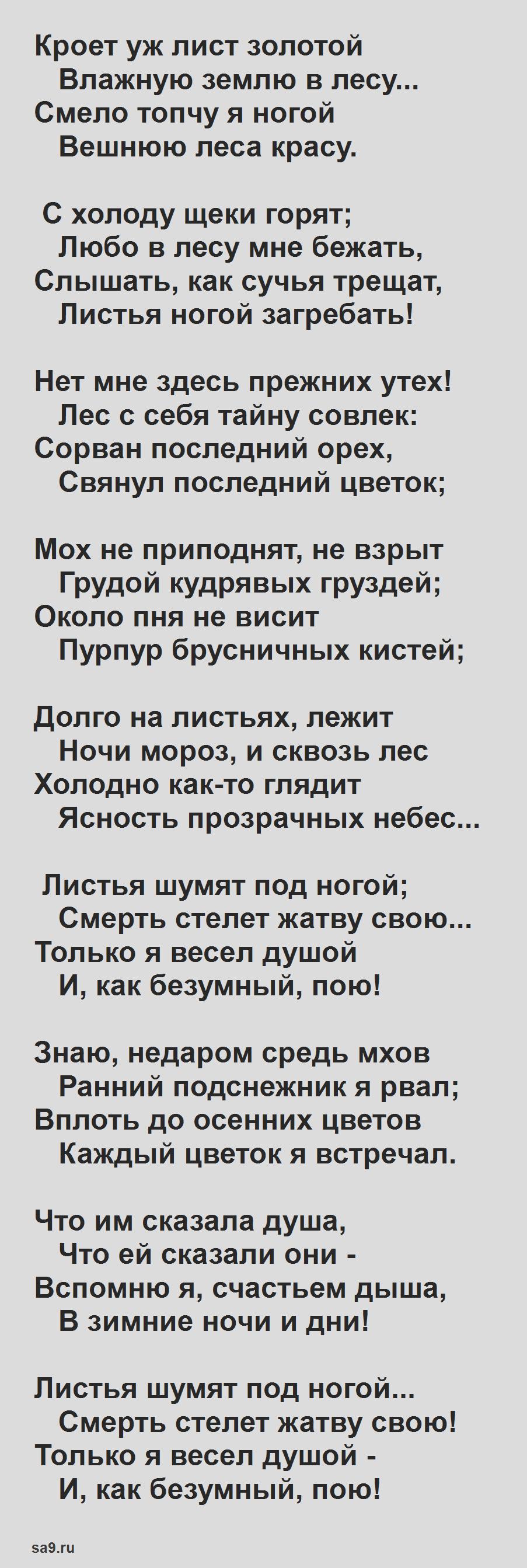 Читать стихи Майкова - Осень