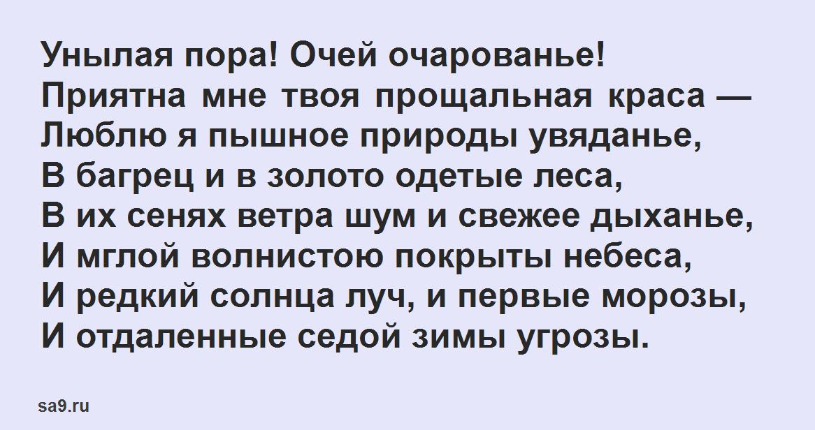 Стихи Пушкина для дошкольников - Унылая пора! Очей очарованье!