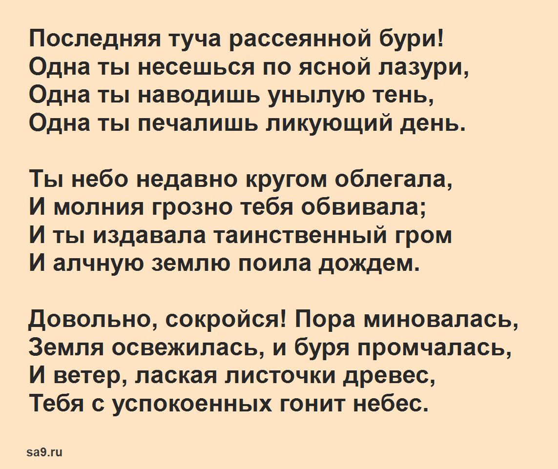Читать стихи Александра Сергеевича Пушкина для детей про лето - Туча