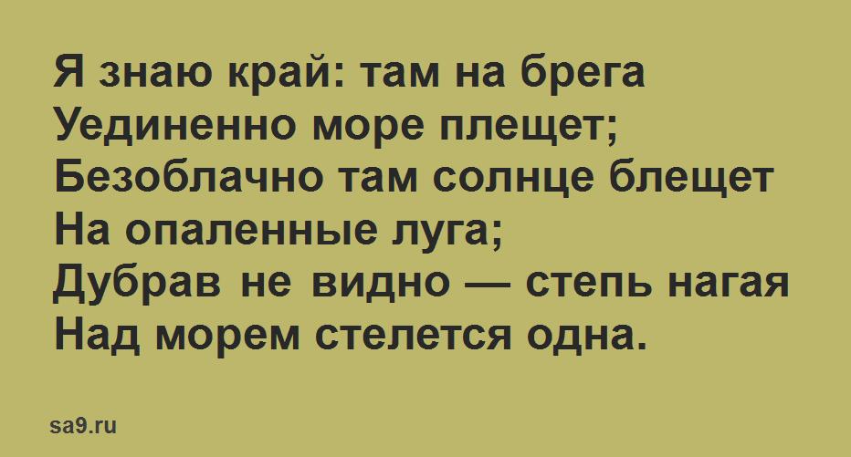 Стихи Пушкина для дошкольников 6 лет - Я знаю край там на брега