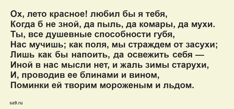 Стихи Пушкина для дошкольников 7 лет - Ох, лето красное