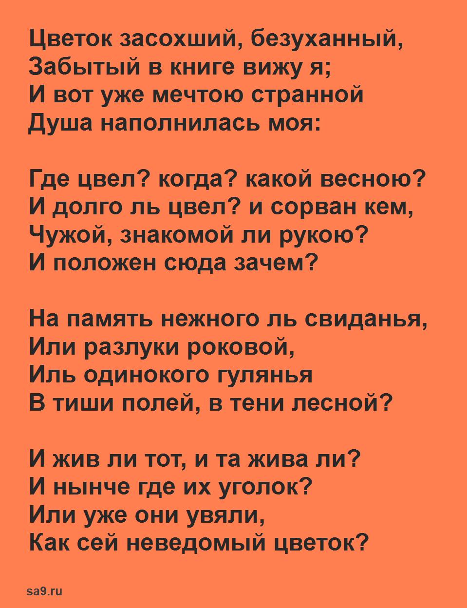 Легкие стихи Пушкина для детей - Цветок