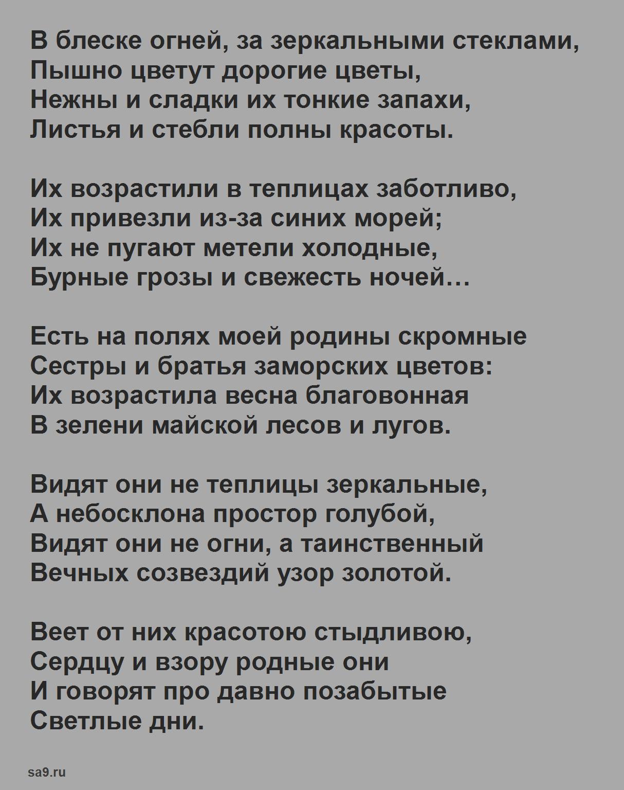 Читать стихи Бунина - Полевые цветы