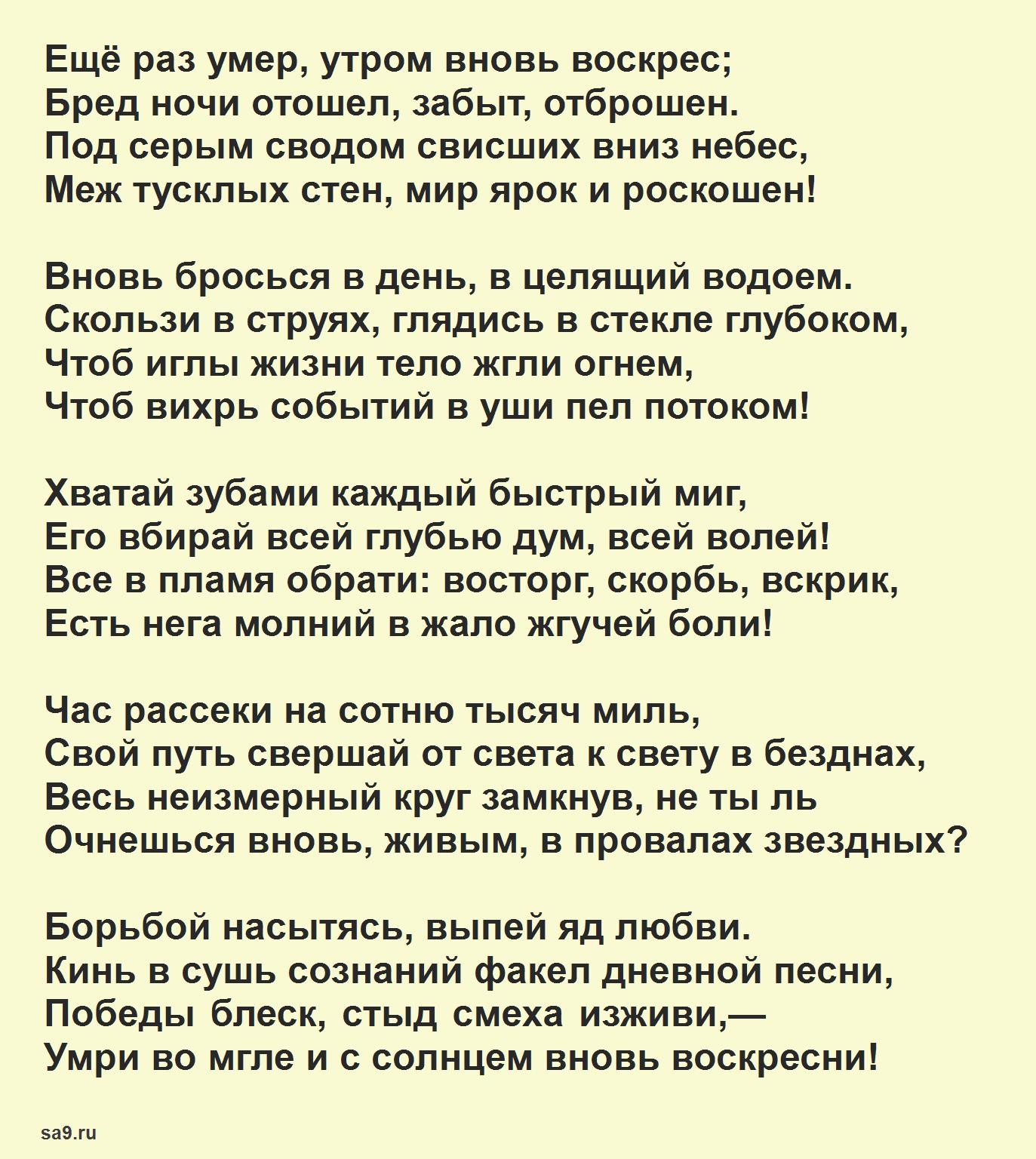 Читать короткие стихи Брюсова - День