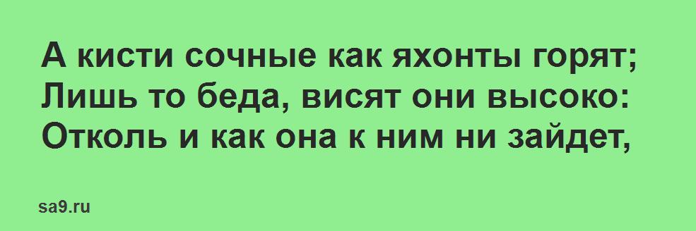 Басня Крылова 'Лисица и виноград'