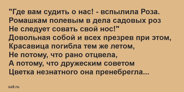Басня Михалкова 'Ромашка и Роза', для детей