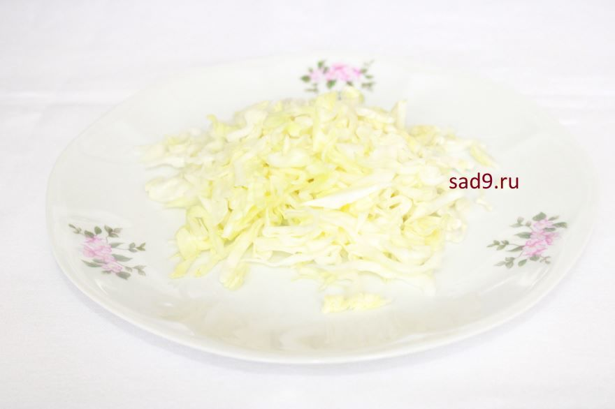Салат с капустой и огурцом, пошаговый рецепт салата с фото