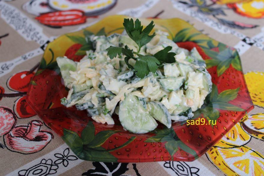 Салат с огурцом и яйцом, простой салат с фото