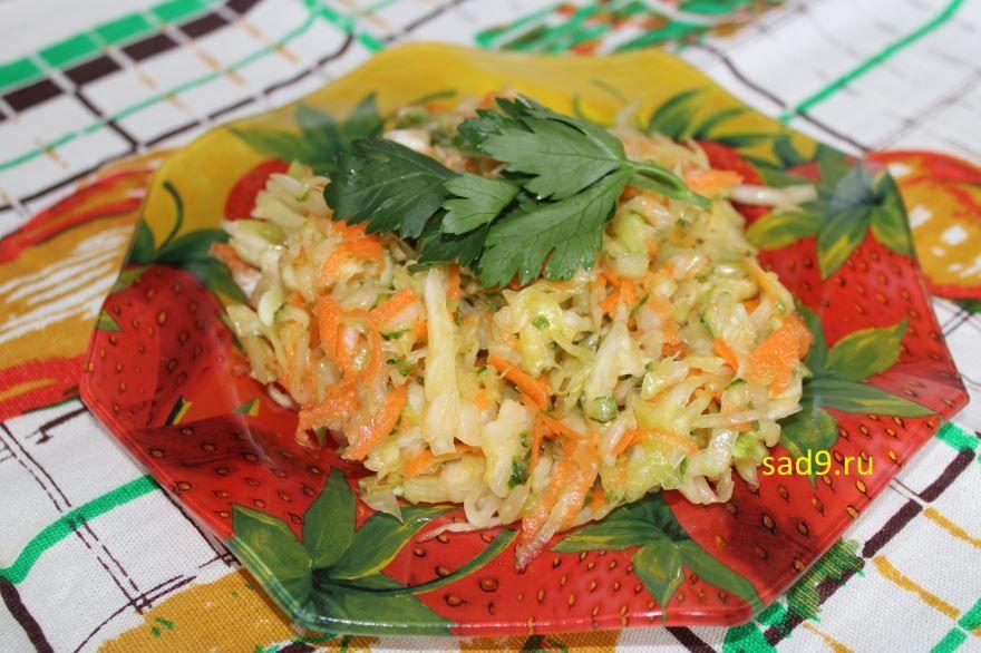 Салат из капусты с морковью, вкусный и простой салат