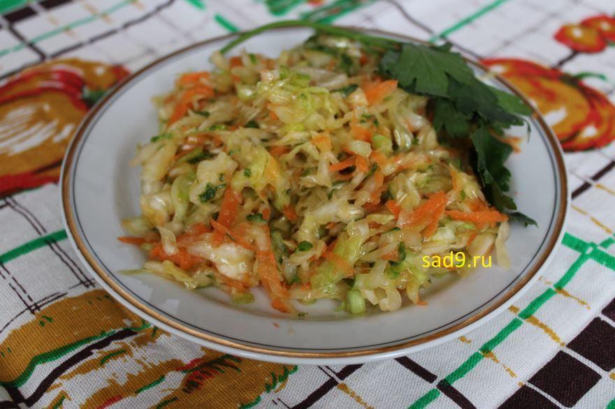 Рецепт и способ приготовления салата из капусты с морковью, с фото