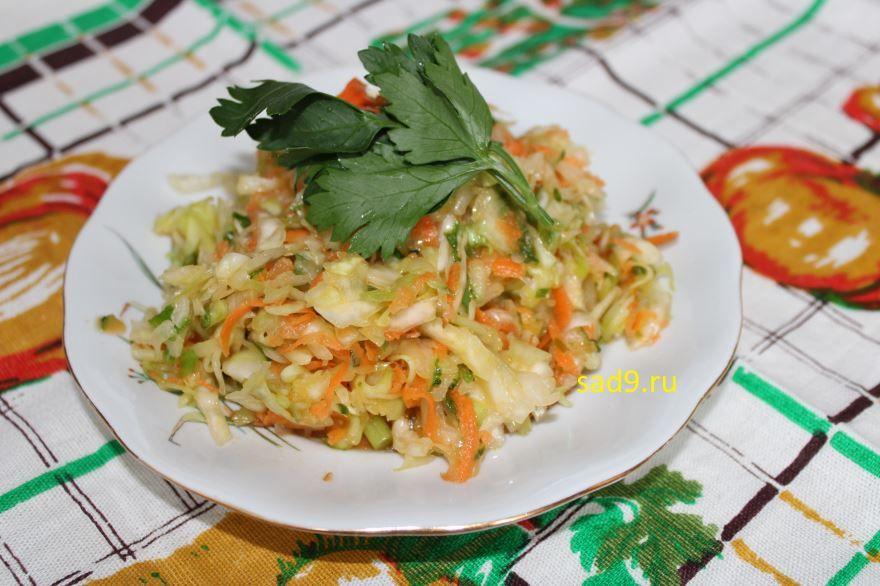 Салат из капусты с морковью с фото в домашних условиях