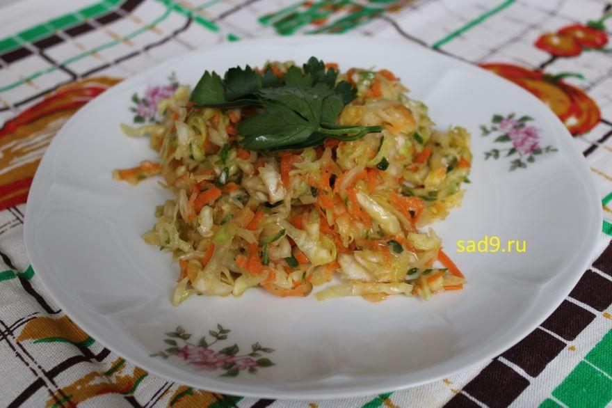 Салат из капусты с морковью, рецепт приготовления с фото