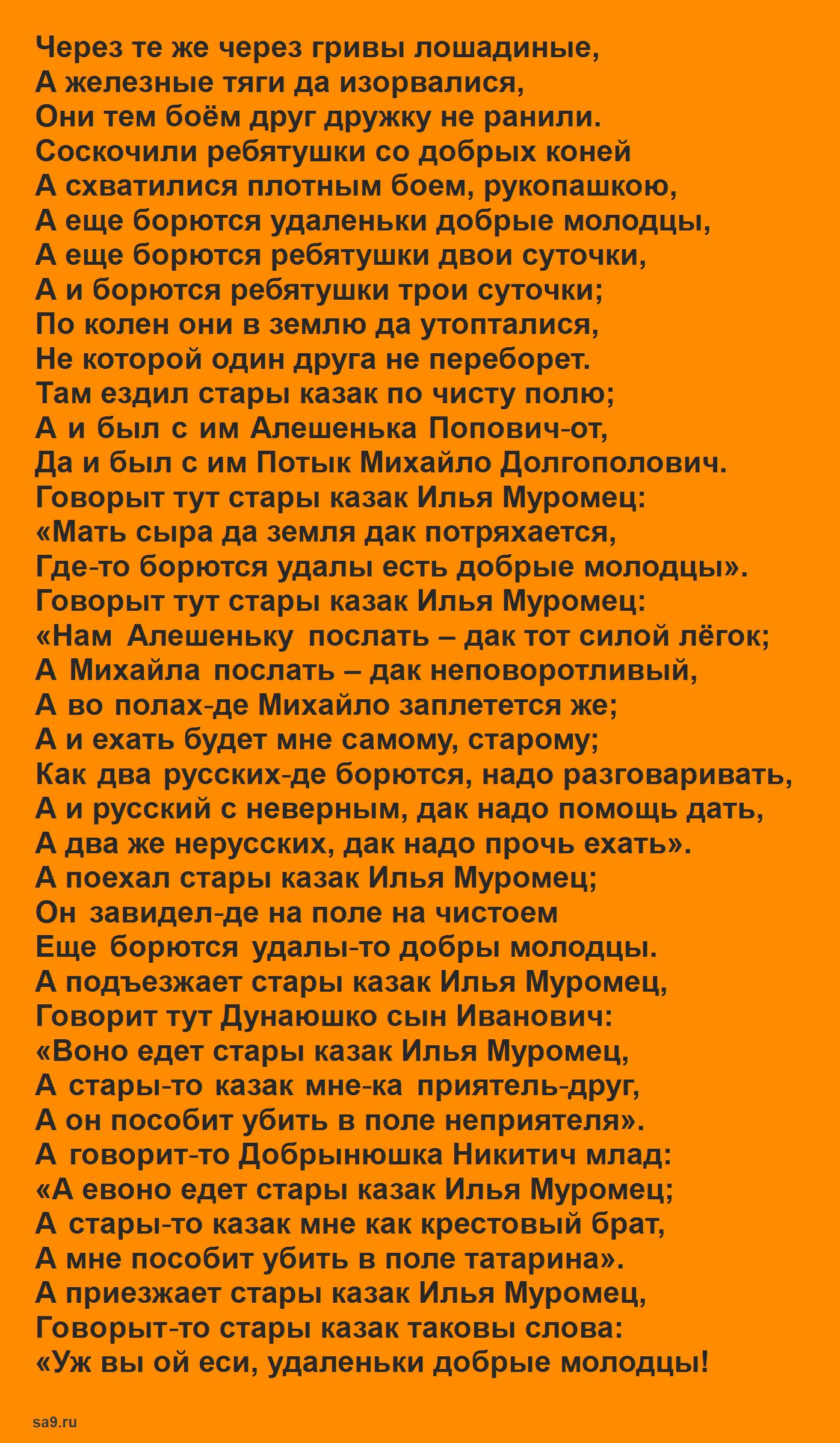 Читать русскую народную былину - Бой Дуная и Добрыни