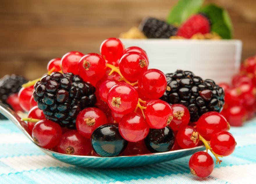 Полезные ягоды красивая картинка