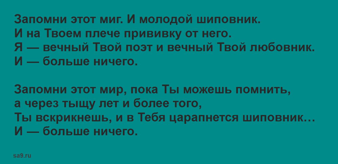 Стихи о любви современных поэтов, Вознесенский