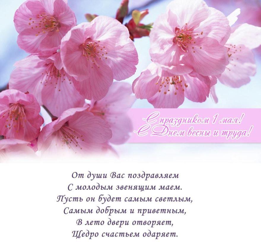 Красивое, интересное стихотворение на 1 мая