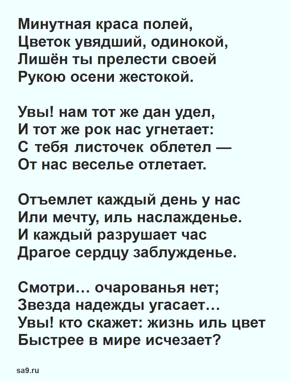 Стих Жуковского 16 строк - Цветок