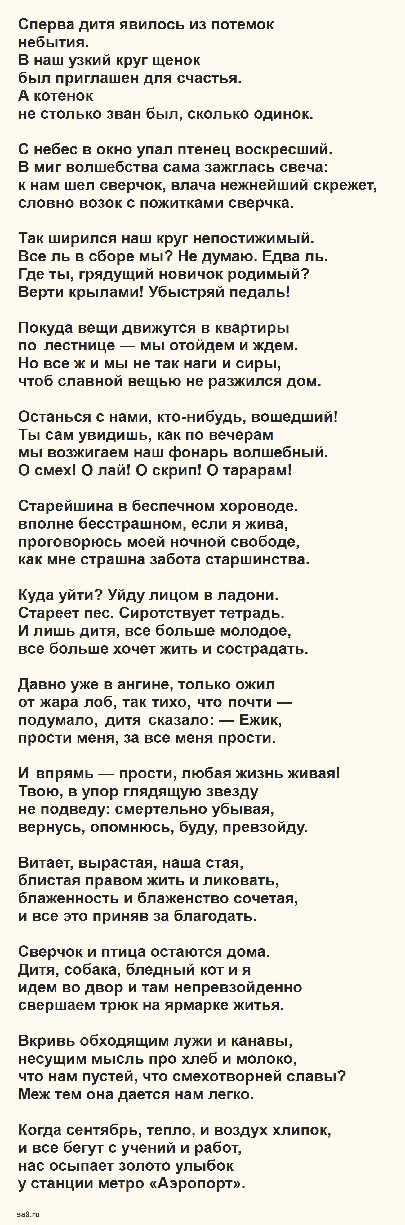 Стихи о жизни - Семья и быт, Ахмадулина