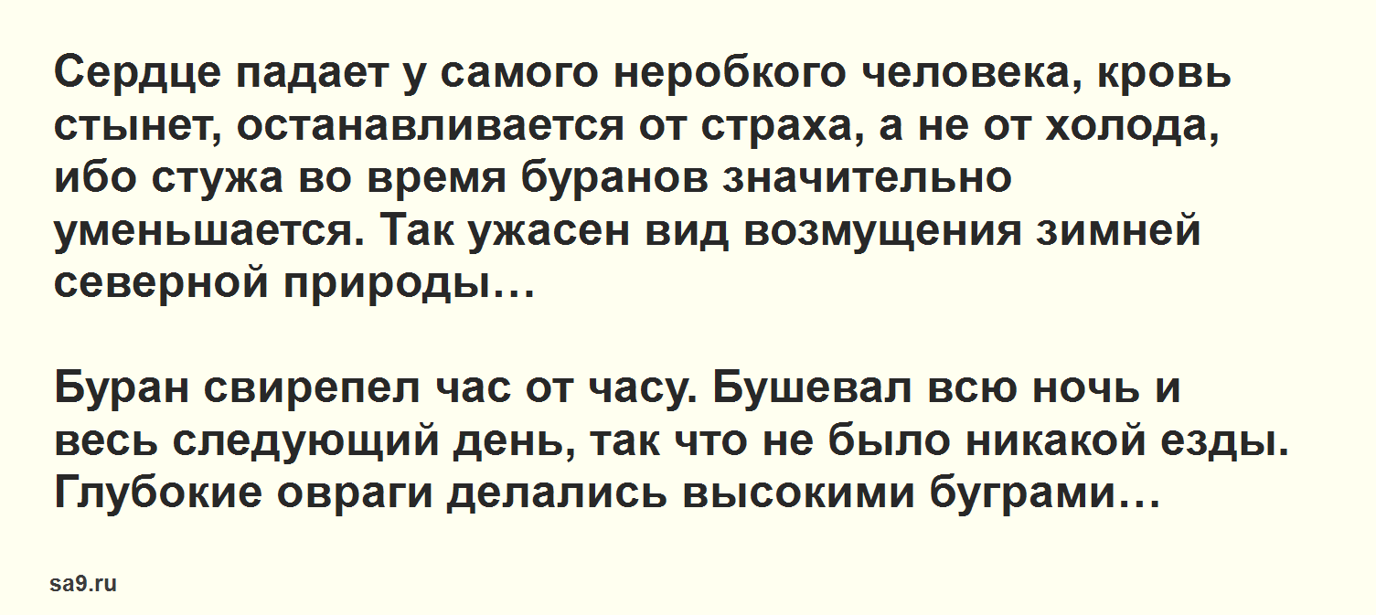 Читать интересный рассказ - Буран, Аксаков